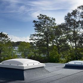 Dome Flat Roof Windows