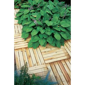 Image for Forest Ridged Deck Tile - 50x50cm - Pack of 16