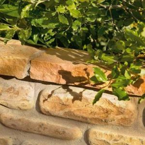 Image for Bradstone Natural Sandstone Edging Modac