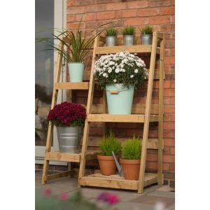Image for Forest Plant Ladder Display