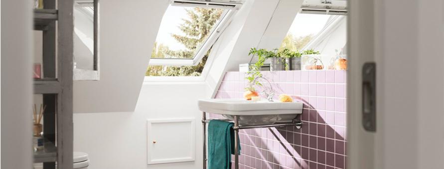Bathroom Roof Windows